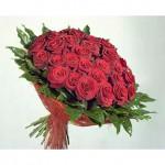 51 роза ГранПри с зеленью