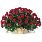 Корзина красных роз 42
