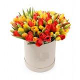 Тюльпаны микс в шляпной коробке