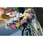 Бесплатная  доставка цветов по Москве
